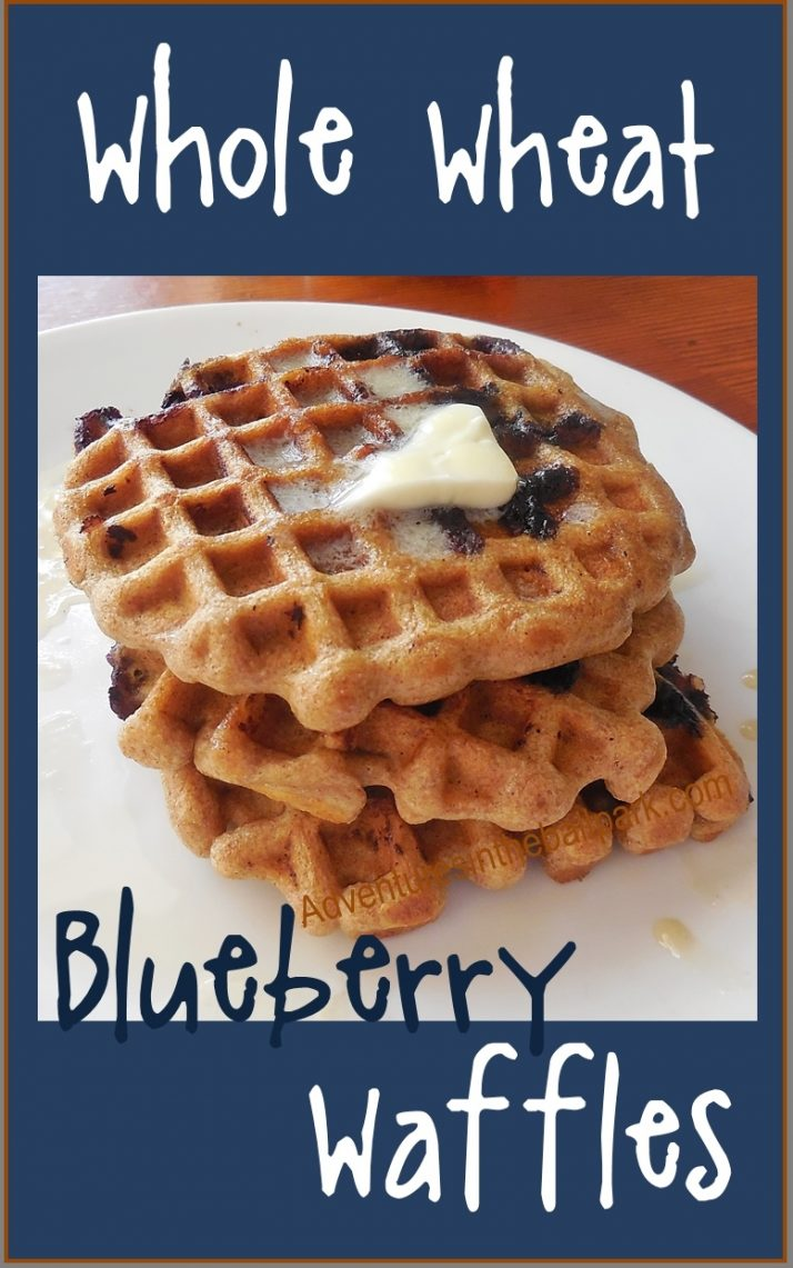 Whole Wheat Blueberry Waffles - Adventures in the Ballpark